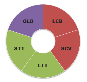 Golden Butterfly Asset Allocation